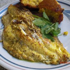 Seared Catfish Creole