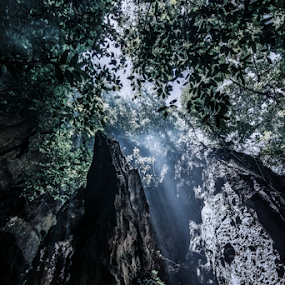 cave in the mountain by Arik S. Mintorogo - Landscapes Forests