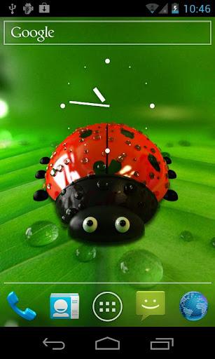 Ladybug Live Wallpaper Free