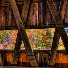 Autumn from inside a bridge by Phil Deets - Buildings & Architecture Bridges & Suspended Structures ( wooden, autumn, covered bridge, pennsylvania, foilage )