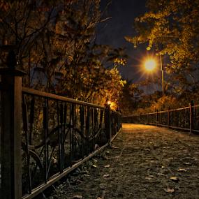 by Otto Mercik - City,  Street & Park  City Parks (  )