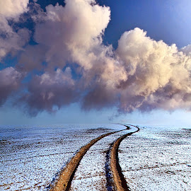 Somewhere Over The Horizon by Phil Koch - Landscapes Prairies, Meadows & Fields ( vertical, fine art, yellow, travel, leaves, love, sky, nature, tree, autumn, snow, light, orange, twilight, agriculture, horizon, tire tracks, portrait, dawn, winter, backlight, serene, outdoors, trees, floral, wisconsin, ray, road, landscape, phil koch, sun, photography, ice, path, horizons, office, clouds, park, green, offroad, scenic, morning, shadows, wild flowers, field, red, blue, color, sunset, fall, meadow, landscapephotography, beam, sunrise, landscapes, hike, mist,  )