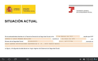 Screenshot of Seg-Social Informe Situación