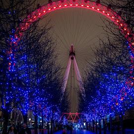 London Eye by Ozlem Mehmet - City,  Street & Park  Night ( london eye, night photography, london, color, night, nightscape )