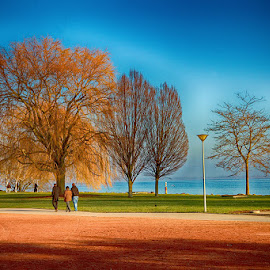 Lake edge park by Radu Eftimie - City,  Street & Park  City Parks ( neuchatel, switzerland )