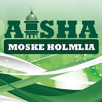 Screenshot of Holmlia Moske