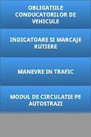 Screenshot of CHESTIONARE AUTO PE CATEGORII