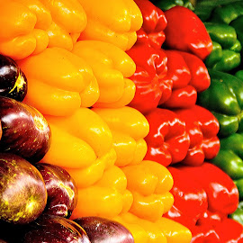 Rainbow peppers by Efraim van der Walt - Food & Drink Fruits & Vegetables ( peppers, vegetables, colours,  )