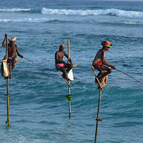 Anglers in Action by Marcel Cintalan - People Group/Corporate ( ceylon, ocean, sri lanka, anglers, fishing,  )
