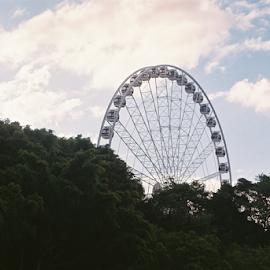 SOUTHBANK WHEEL by James Menteith - City,  Street & Park  Amusement Parks