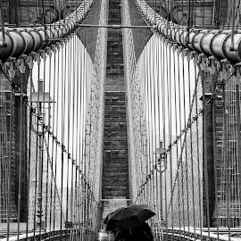 Brooklyn Bridge Snowstorm by Chad Weisser - Buildings & Architecture Bridges & Suspended Structures ( brooklyn bridge, snowstorm, weisser photography, snow, manhattan, Urban, City, Lifestyle )