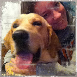 Share via InstaFrame, http://bit.ly/Instaframe by Amber Newton - Animals - Dogs Playing