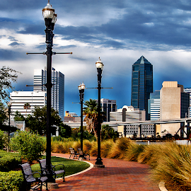 The City by Terri Anderson - Landscapes Travel