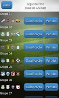 Screenshot of Libertadores 2013
