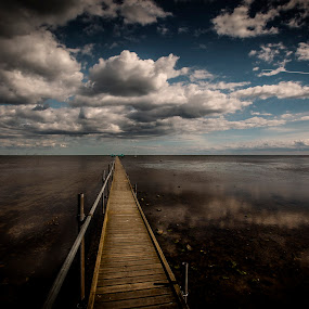 bathing bridge by Eugen Chirita - Landscapes Weather