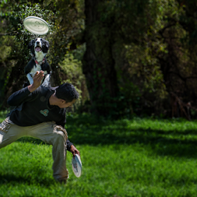 The great Jumper by Cristobal Garciaferro Rubio - Animals - Dogs Playing