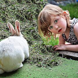 by Susan Plante - Babies & Children Children Candids ( rabbit, child, grass, green, pet,  )