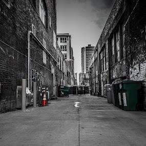 Looking down a long alleyway  by David Whitehead - City,  Street & Park  Street Scenes ( green, street, silver, art, coast, alley, urban, winter, cold, seattle, graffiti, dirty, west )