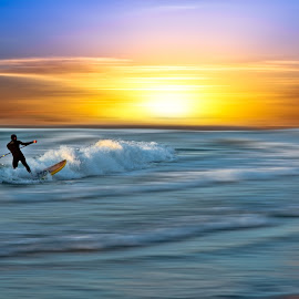 Wave rider  by Josh Adamski - Sports & Fitness Surfing ( shore, josh adamski, surfer, waves, sea, beach, light, sun )