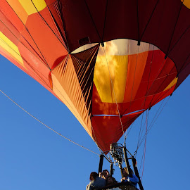 Great weekend at the Carolina Balloon Festival, big THANKS to Gilbert Martin from Balloons over Virginia who flew my family and friends this weekend! by Timothy Ferron - News & Events Sports