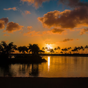 Sunset at Hilton Wakiki by Wenjie Qiao - Landscapes Sunsets & Sunrises ( sunset, wakiki )