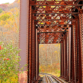 Rusted Railroad Bridge by Denise Guthery - Transportation Trains (  )