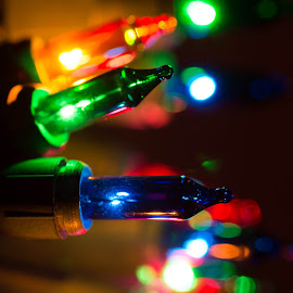 Tis the season by TJ Campbell - Novices Only Macro (  )