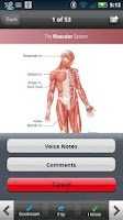 Screenshot of Anatomy & Physiology Cards