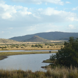 by Cheryl Scally - Landscapes Prairies, Meadows & Fields