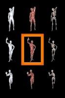 Screenshot of 360° Anatomy for Artists: Male