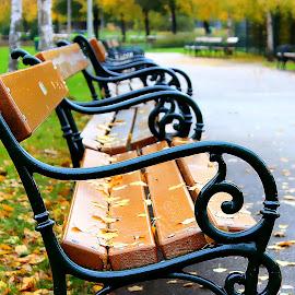 by Eni Zanic - City,  Street & Park  City Parks