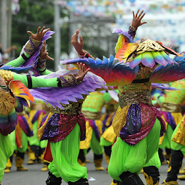 Sinulog Dancers by Ferdinand Ludo - News & Events Entertainment ( once a year event, cebu city, sinulog 2014 )