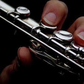 il clarinetto by Stefano Moschella - Artistic Objects Musical Instruments ( music, concert, musica, rome, clarinetto, fiati )
