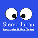 3D Stereo Japan icon