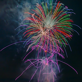 Purple Bees by Pat Green - Abstract Fire & Fireworks ( steilacoom, events, 4th of july 2013, fireworks, things, wa, places, 2013 holidays )