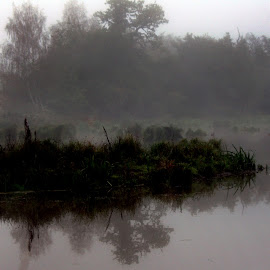 Foggy morning by Don Bech - Nature Up Close Water ( tree, fog, barns, misty, island )