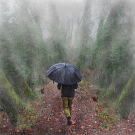 Through by George Leontaras - Digital Art People ( grteece, volos, fog.umbrella, maipulation, digital art, fine art, trees, photoshop.glart.hellas )