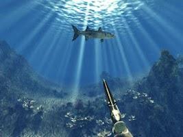 Screenshot of Fishing lot. Fishing more !