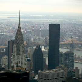 chrysler building and trump tower by Alec Halstead - City,  Street & Park  Skylines