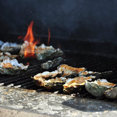 How to Grill Oysters at Home