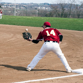 by Colin Anderson - Sports & Fitness Baseball (  )