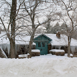 Goat Island Carriage House by Tina Marie - Buildings & Architecture Homes ( goat island, niagara falls new york, winter scene, building, ice, snow, new york, house, carriage house,  )