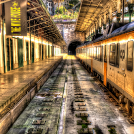 oporto train station by Carlos Pereira - Transportation Trains ( station, s. bento, train, porto )
