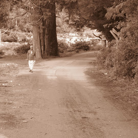 The Road Not Taken by Abhimanyu Srinath - Novices Only Street & Candid ( kodaikanal, home, sepia, oldman, lake )