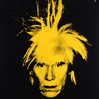 the warhol: art icon