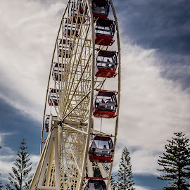 Sky Ride by Pamela Christensen - City,  Street & Park  City Parks ( fremantle, perth, park, ferris wheel, western australia,  )