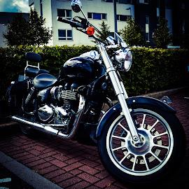 Beautifull Triumph Bicycle by Lyndsay Hepburn - Transportation Motorcycles ( triumphmotorbike, motorbike, chromeandblackmotorbike, shineymotorbike, beautifulmotorbike )