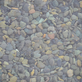 Water Rocks by Thomas Shaw - Landscapes Underwater ( underwater, ripples, nevada, fountain, pebbles, hotel, wet, rocks )