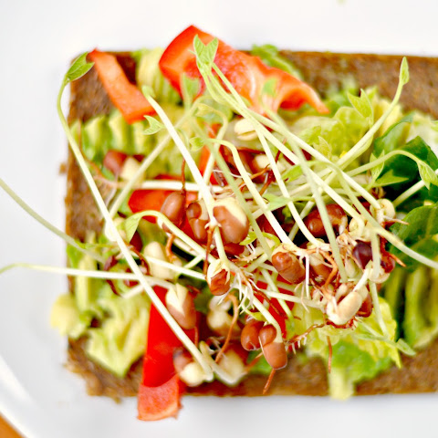 Bean Sprout Sandwich Avocado Sandwich With Sprouts