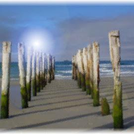 Dunedin, NZ by Marion Metz - Digital Art Places ( landmark, rotten, dunedin, sea, ocean, beach, poles, new zealand )